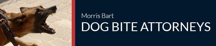 Morris Bart Dog Bite Attorneys