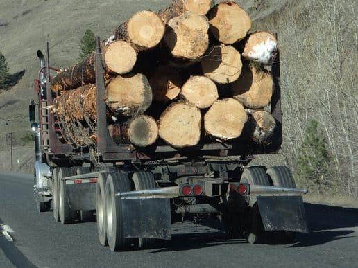 18 wheeler hauling logs on a highway