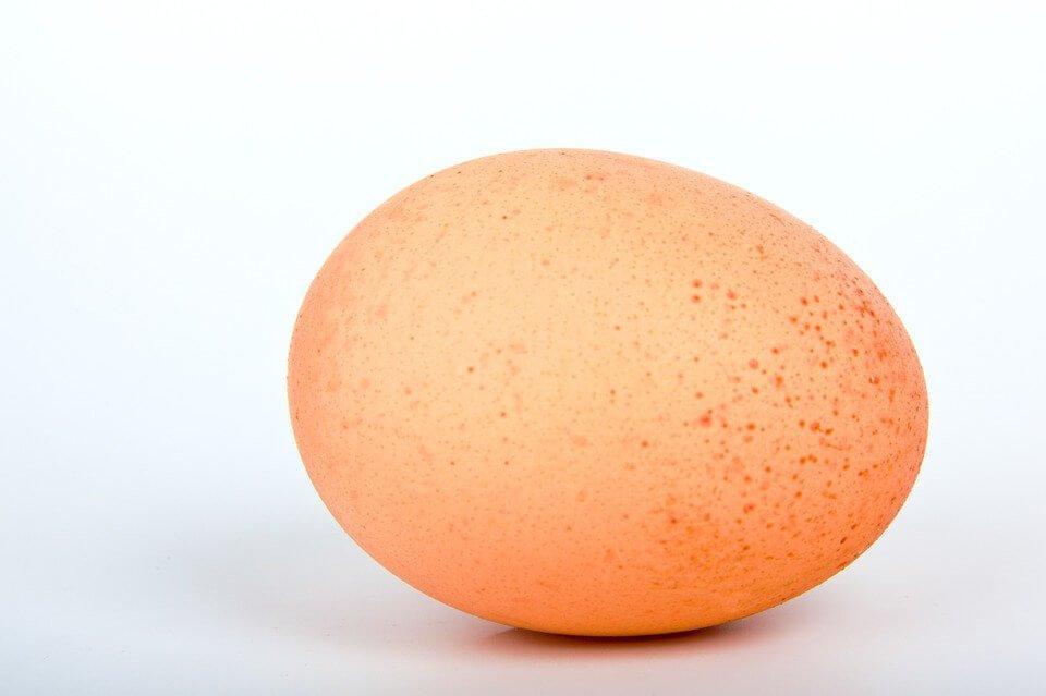egg, eggshell plaintiff, personal injury